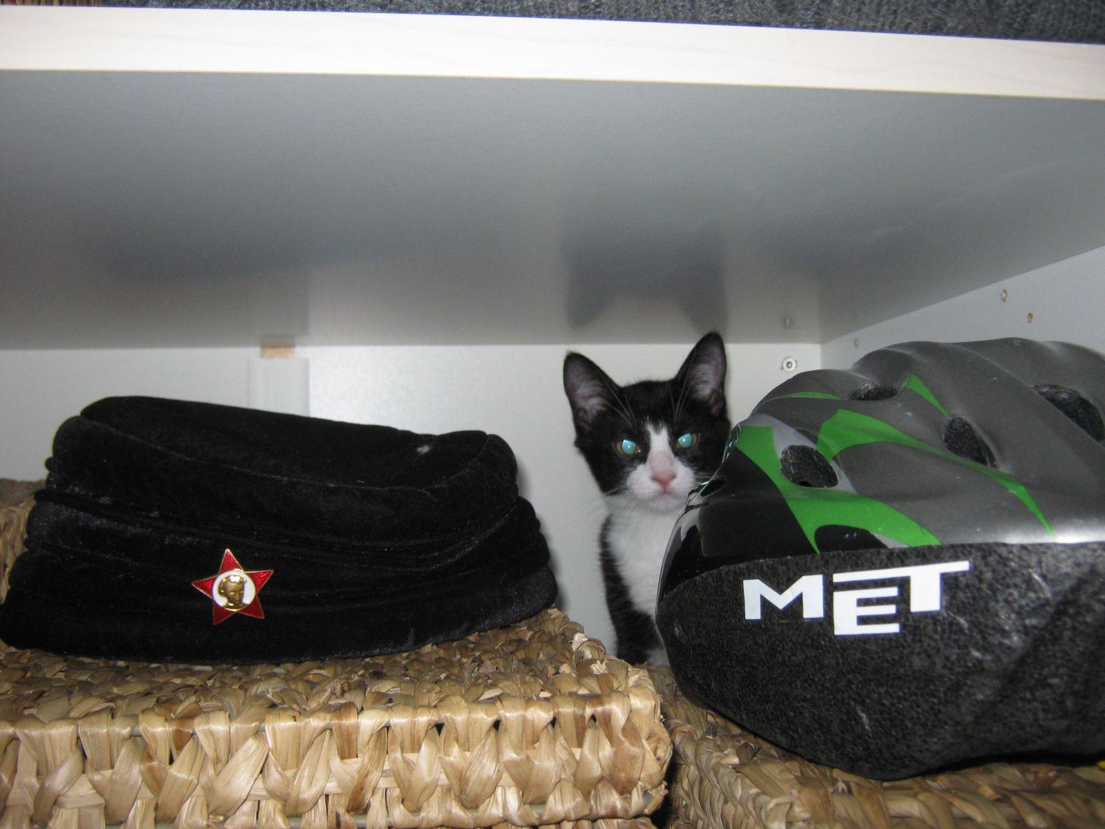 2009-12-12-0224_Kat