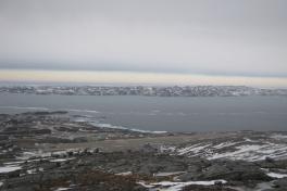 Postfly letter i Nuuk