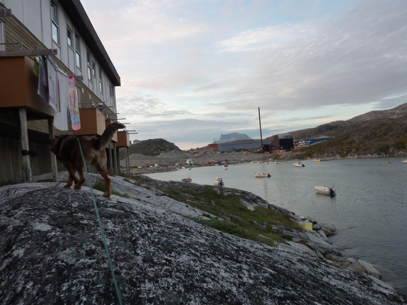 2010-07-15-2257_-_Djanco; Sermitsiaq