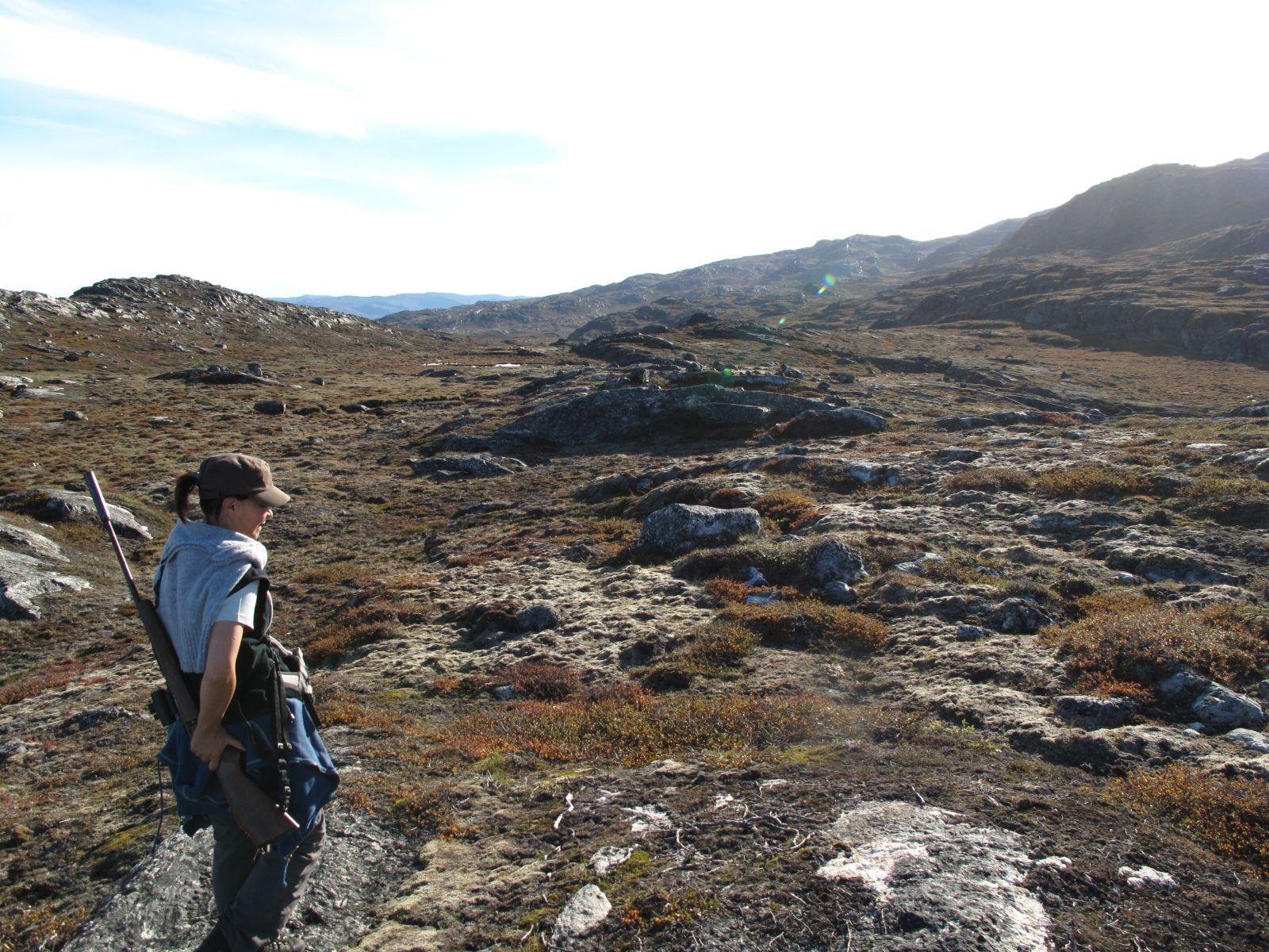 2010-09-04-0905_-_Nuka Klausen Telling; Terræn