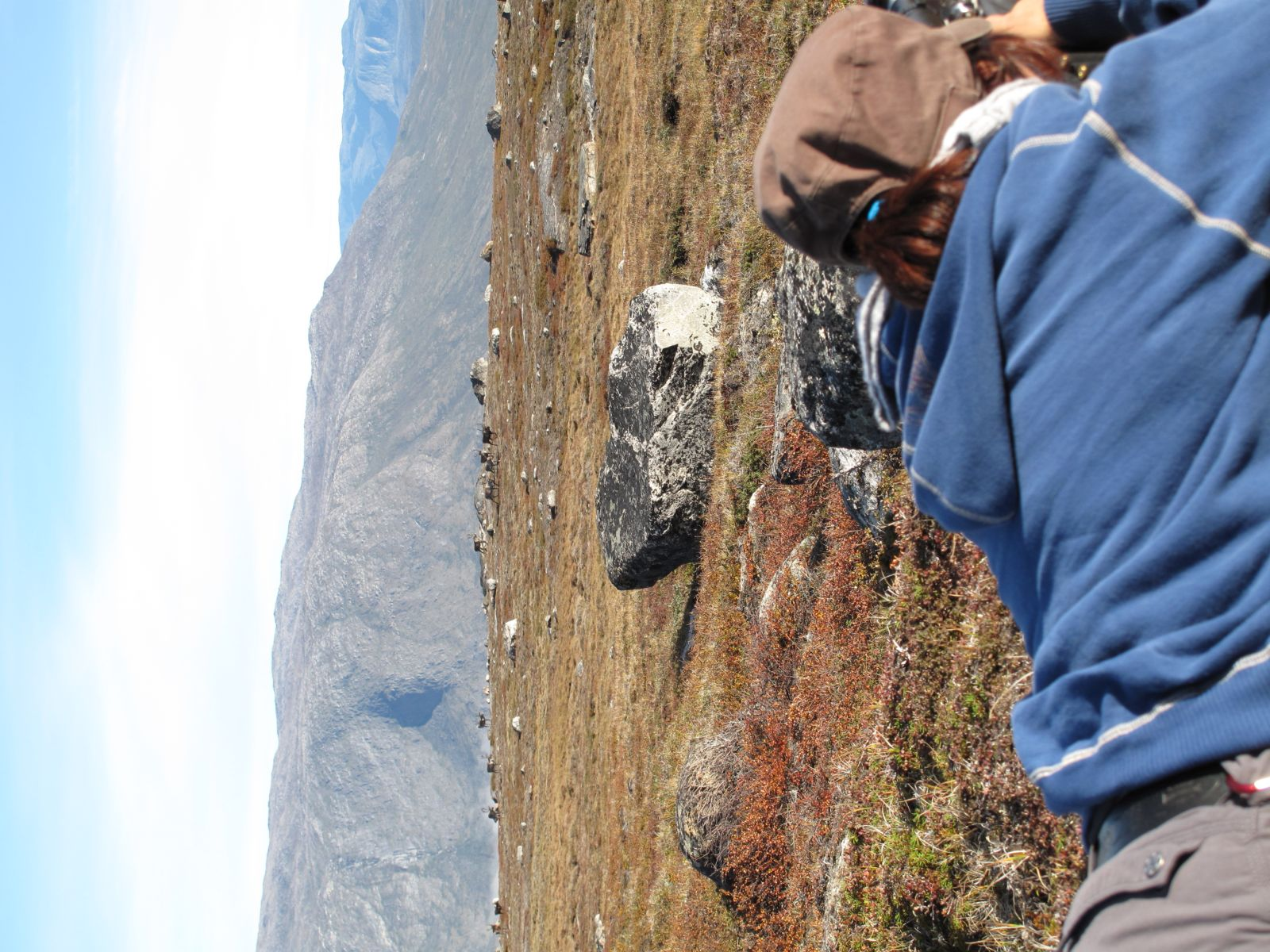 2010-09-04-1158_-_Nuka Klausen Telling; Rensdyr