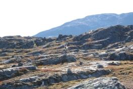 2010-09-04-1438_-_Rensdyr; Terræn