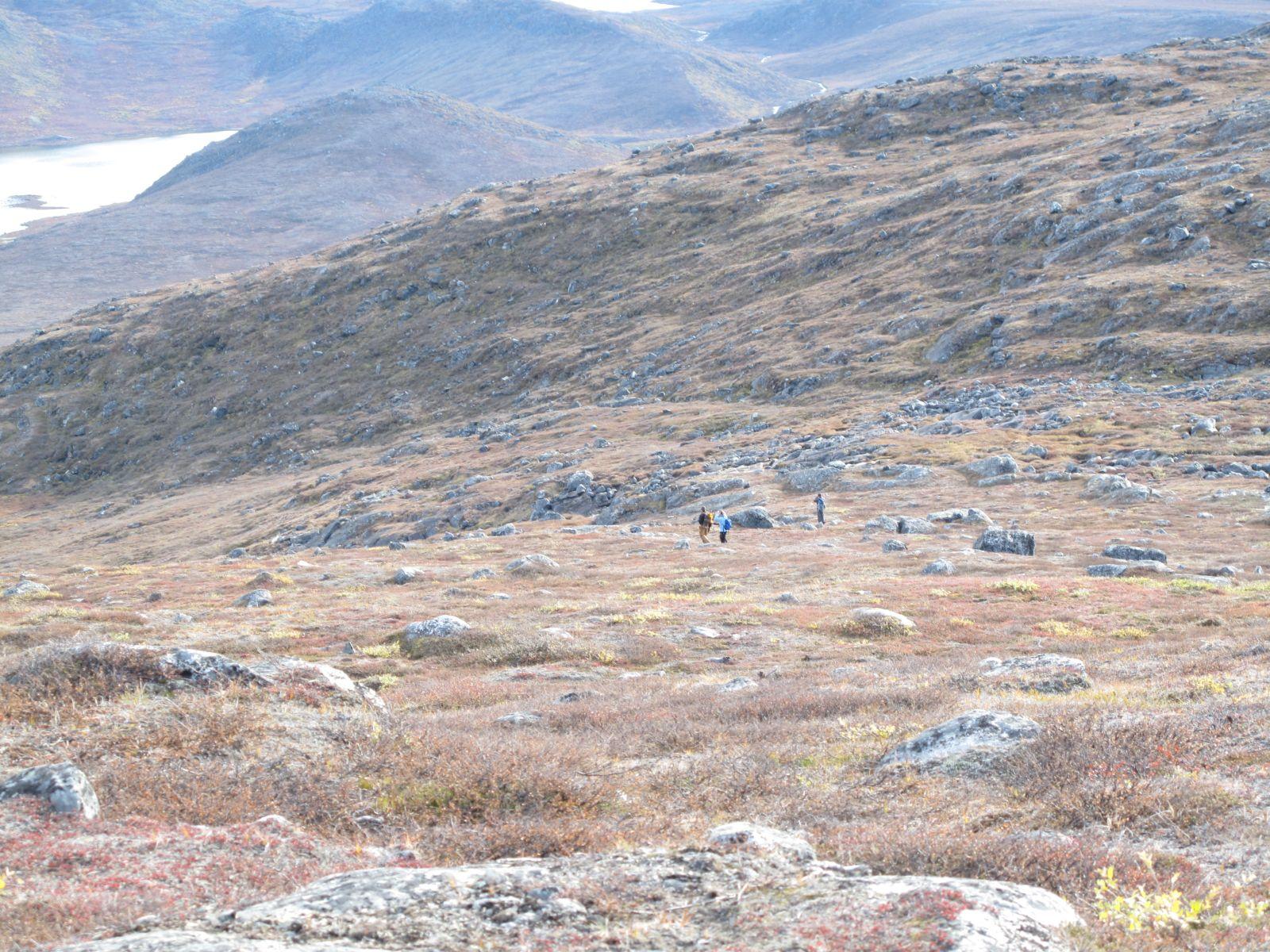 2010-09-25-1143_-_Terræn