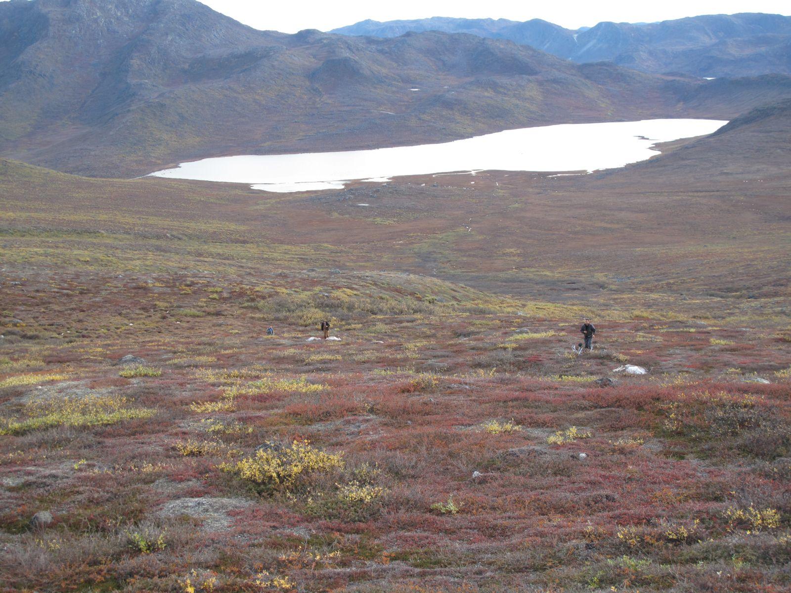 2010-09-25-1213_-_Terræn