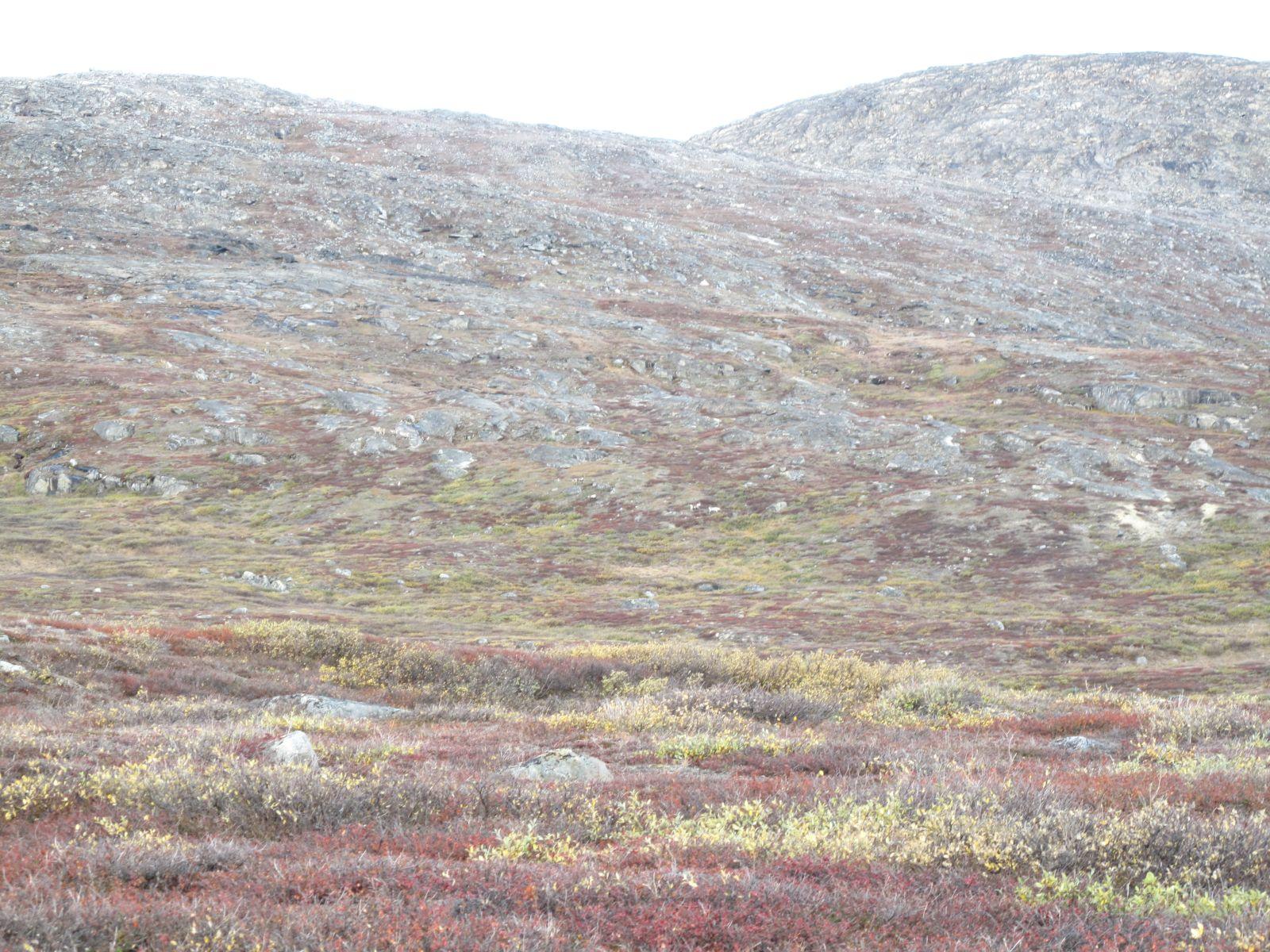 2010-09-25-1214_-_Terræn