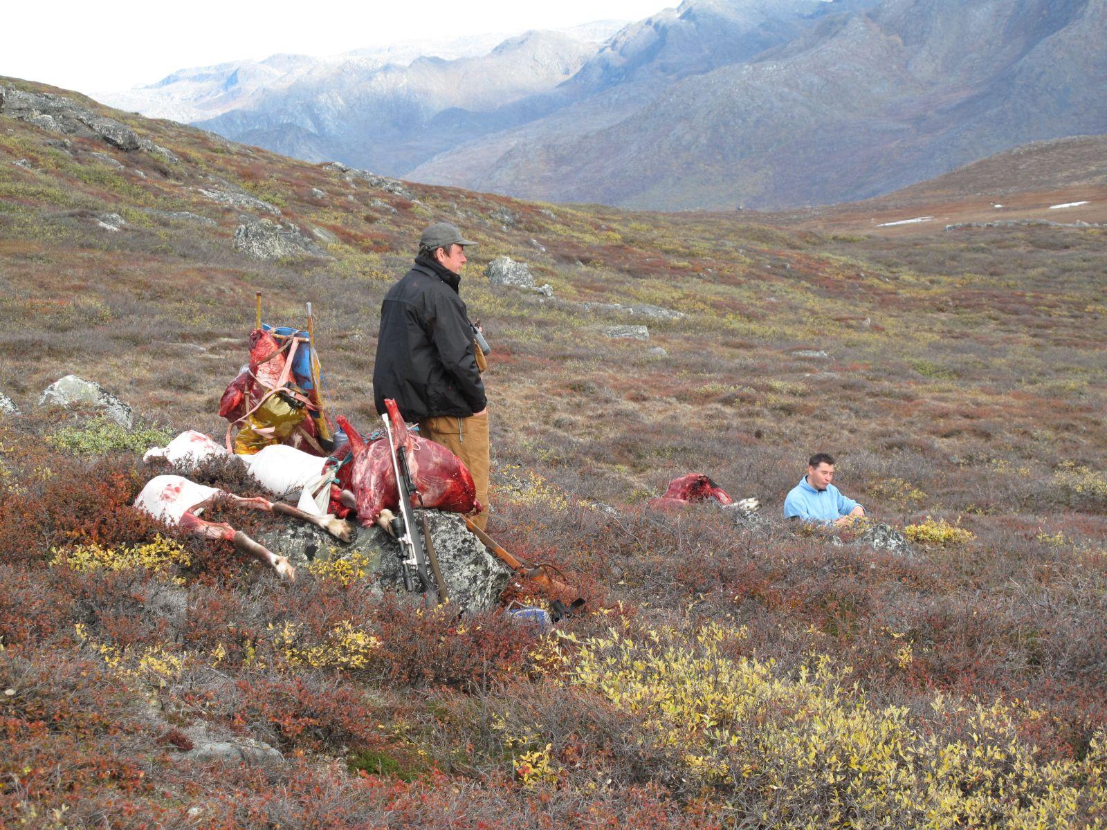 2010-09-25-1523_-_Bylt; Jesper Eugenius Labansen; Søren Labansen; Terræn