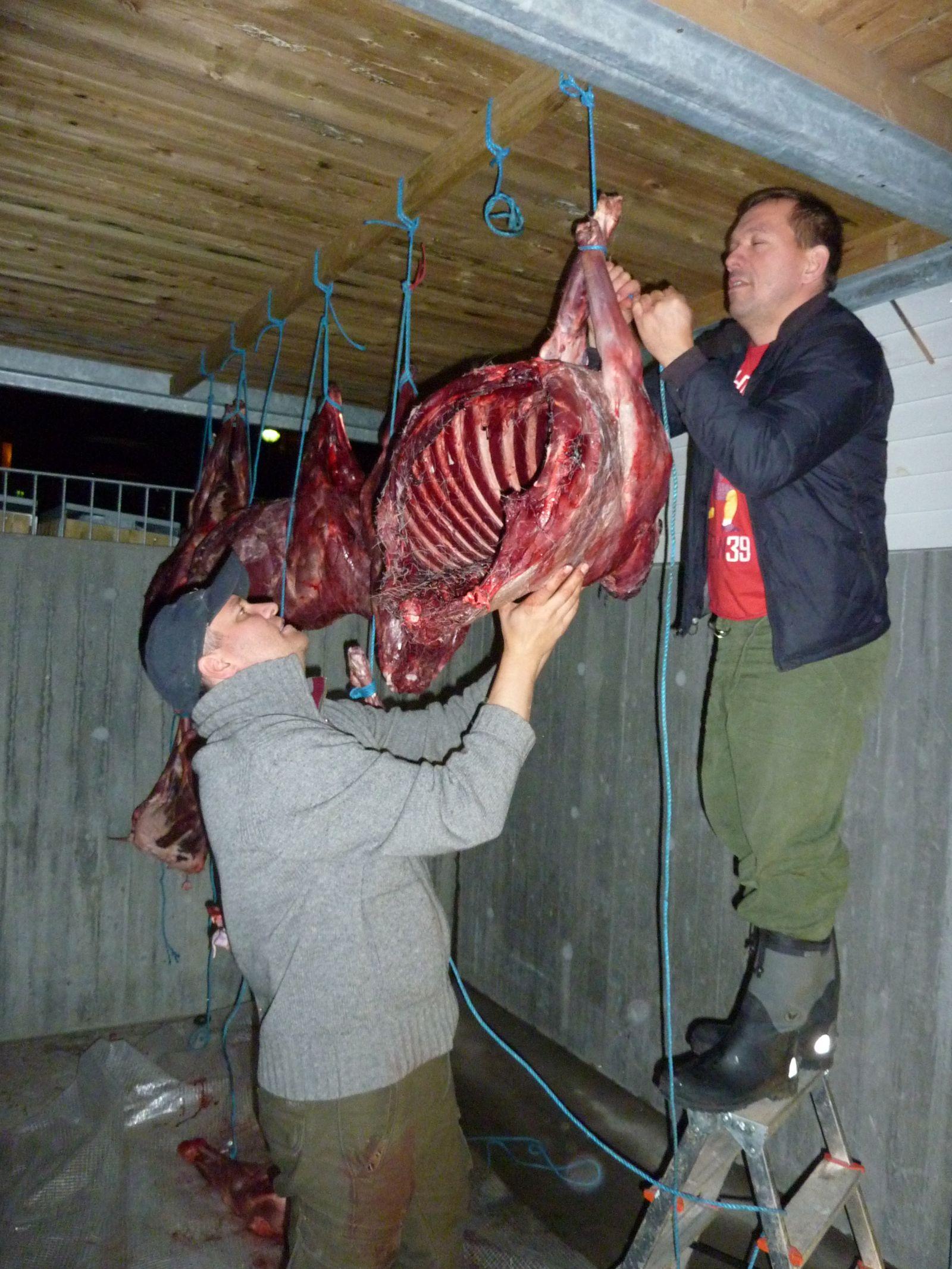2010-10-19-2000_-_Henrik Steinbacher; Rensdyrkød; Svend Sværd
