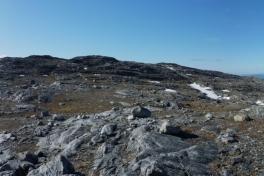 Toppen af Lillemalene