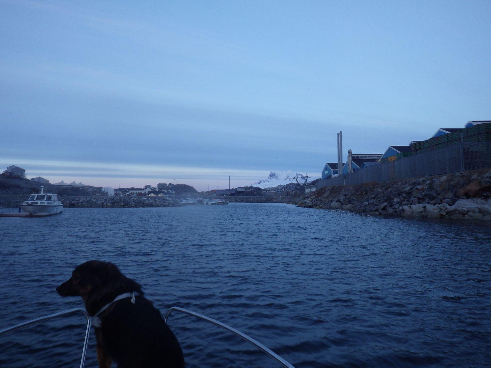 2014-10-20-1640_-_Djanco_Gode_1_Sermitsiaq
