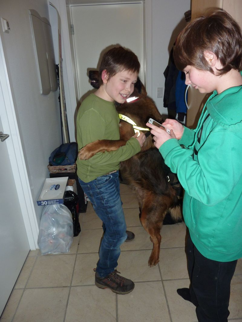 2011-01-14-2103_djanco_rumle_labansen_sean_2