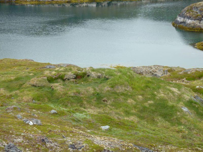 Hustomter og mødding i nærheden af Kanneq
