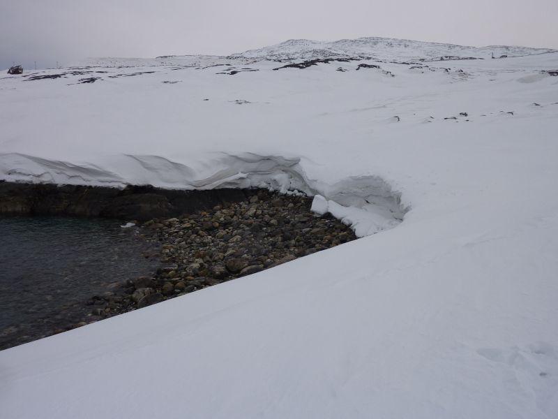 2012-01-20-1445_-_snefod_2
