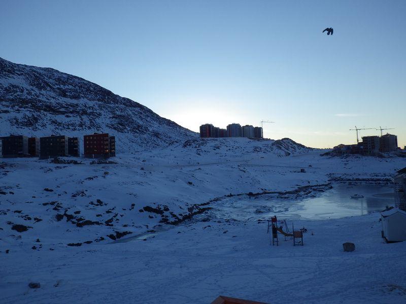 2012-12-31-1649_-_ravn_udsigt_fra_altan