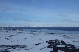 2013-02-20-1620_-_issamling