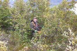 2013-09-28-1935_-_soeren_labansen_vegetation