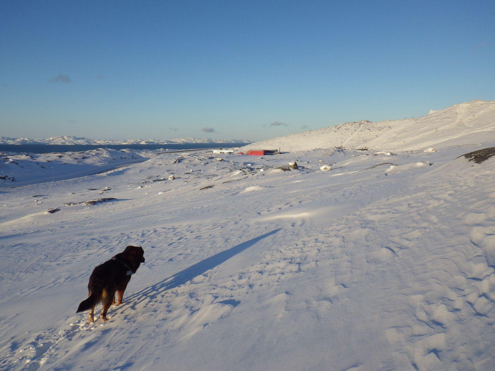 2014-02-15-1531_-_Djanco_Gode_1_Lufthavn_Sermitsiaq_Skilift