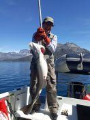 Sejltur til Sulisuutip - 16 kg torsk
