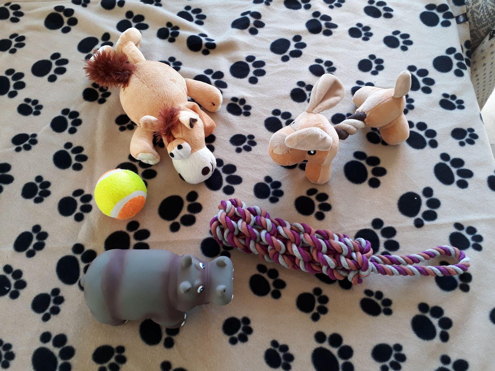 Emily's legetøj