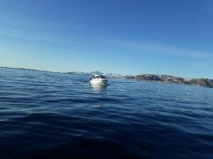 Store bededagsferie i Tasiussarsuaq sammen med Rex, Alu og Dorthe. Super dejligt vejr og god mad.
