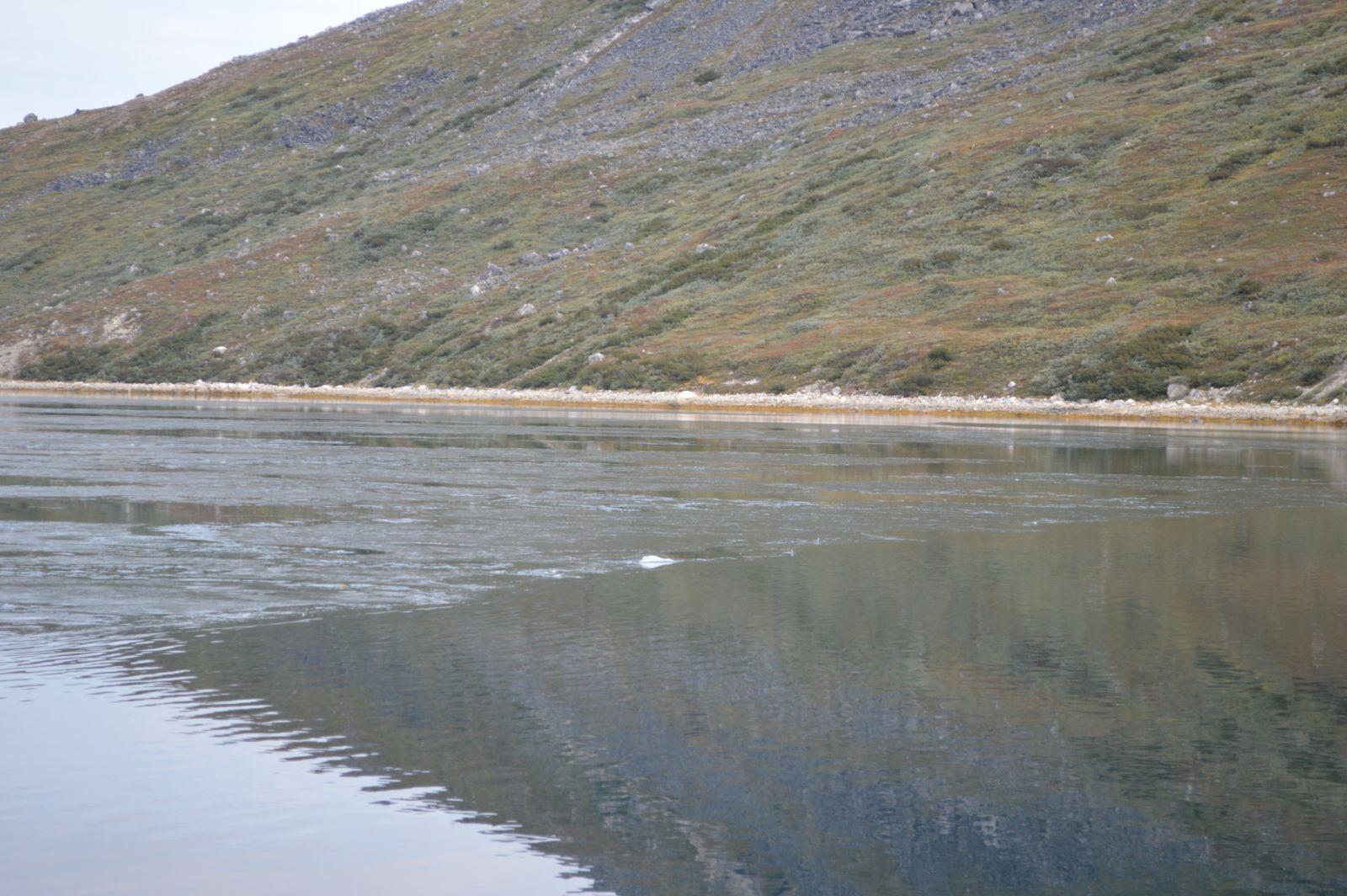 Nyis i Præstefjorden